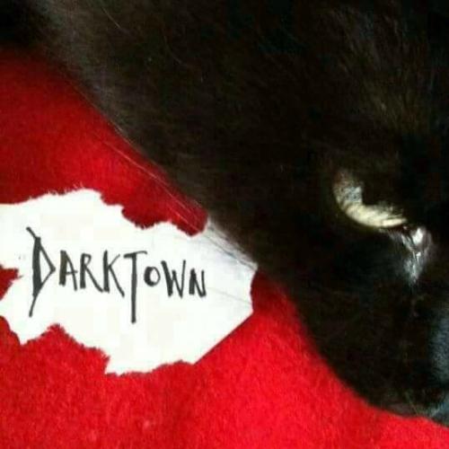 DarktownLogo